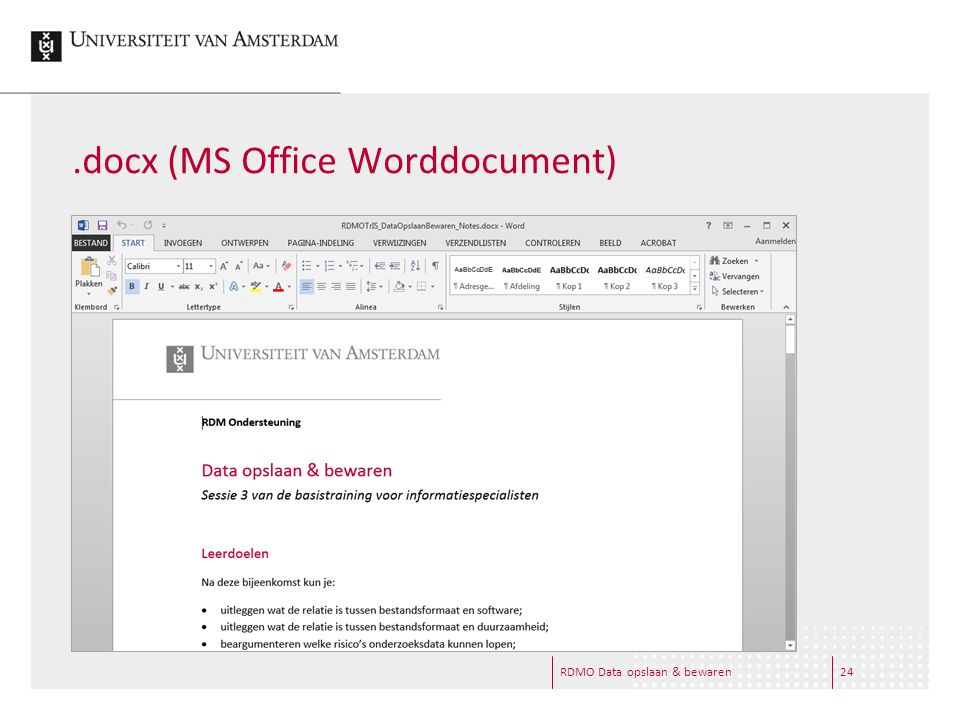 .docx (MS Office Worddocument) RDMO Data opslaan & bewaren24