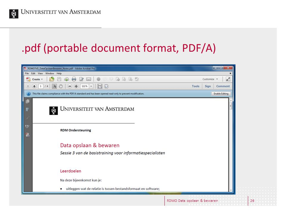 .pdf (portable document format, PDF/A) RDMO Data opslaan & bewaren26