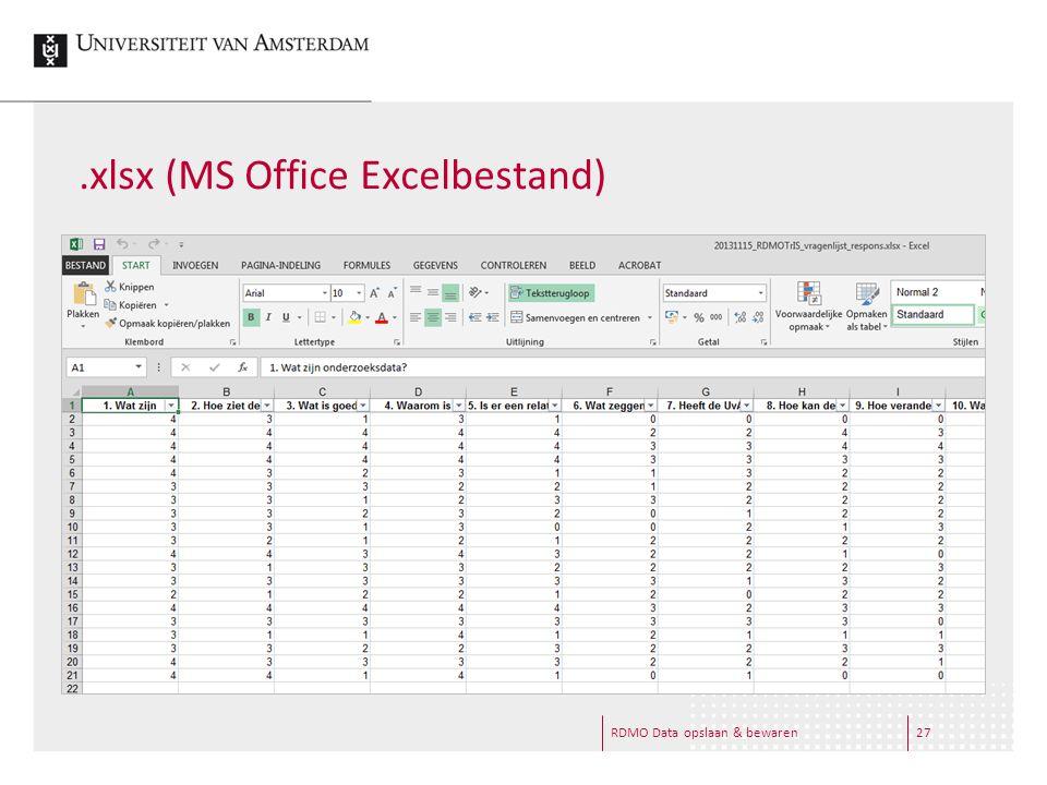 .xlsx (MS Office Excelbestand) RDMO Data opslaan & bewaren27