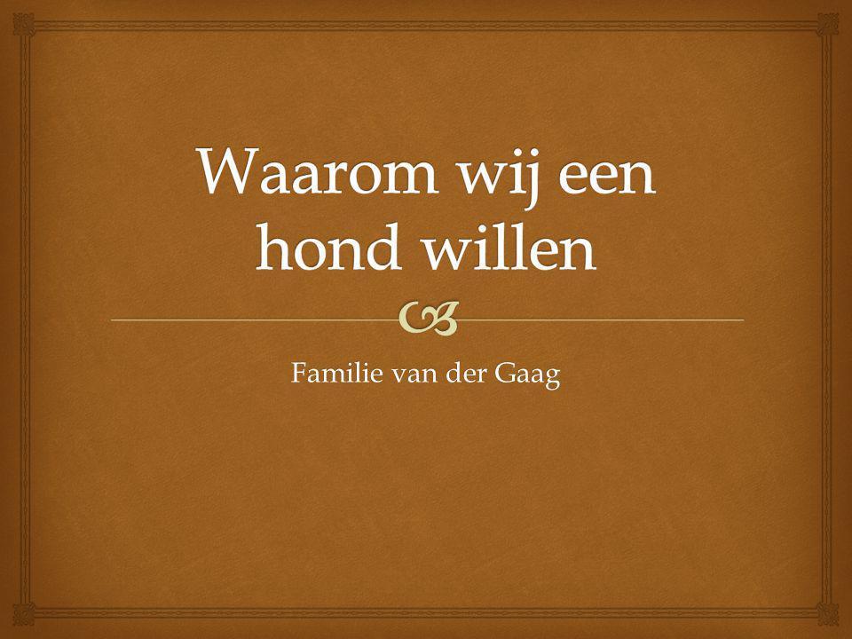 Familie van der Gaag