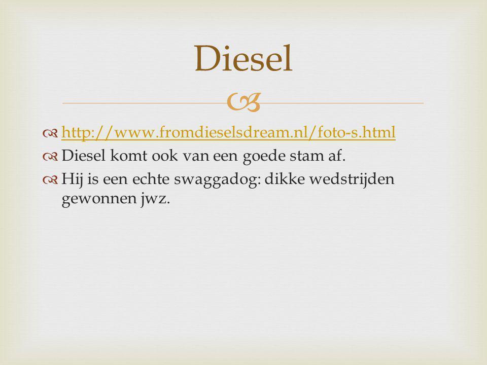   http://www.fromdieselsdream.nl/foto-s.html http://www.fromdieselsdream.nl/foto-s.html  Diesel komt ook van een goede stam af.  Hij is een echte