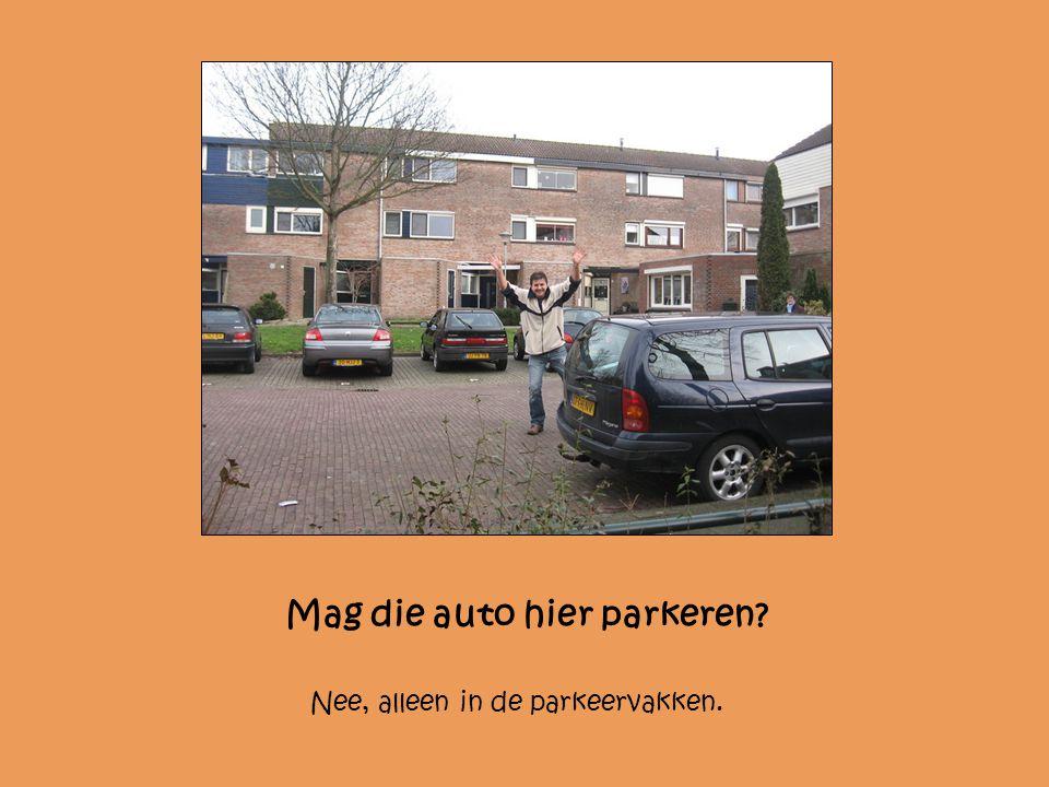 Mag die auto hier parkeren? Nee, alleen in de parkeervakken.
