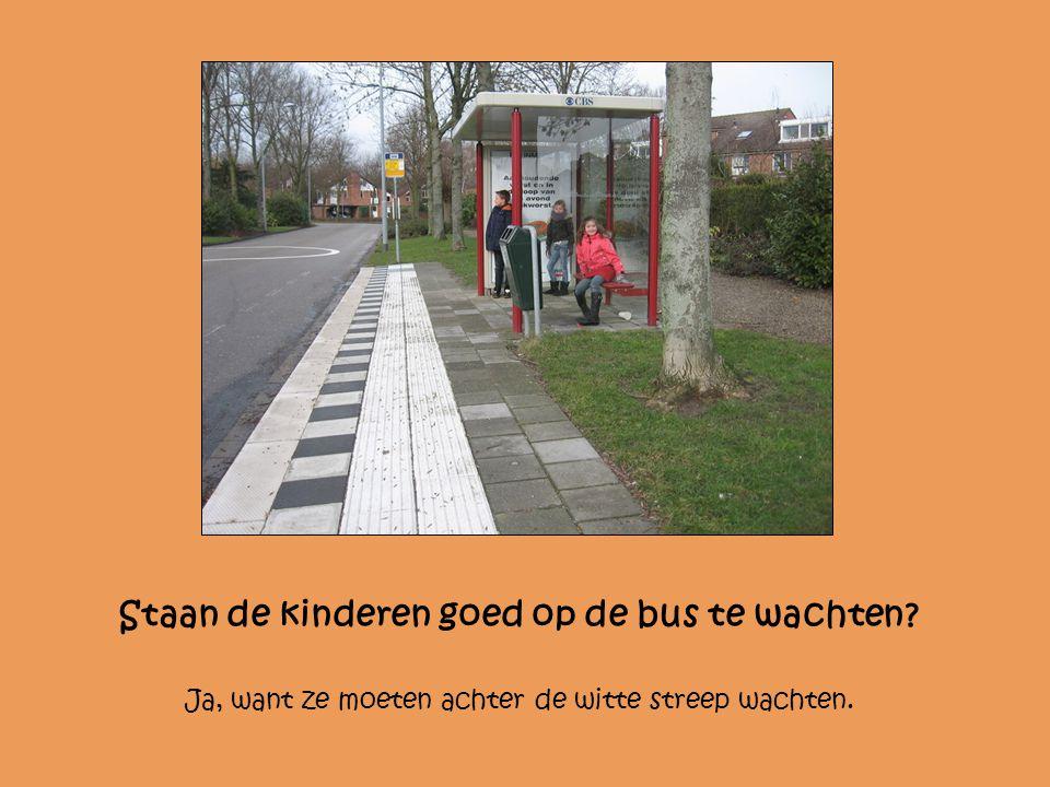 Staan de kinderen goed op de bus te wachten? Ja, want ze moeten achter de witte streep wachten.