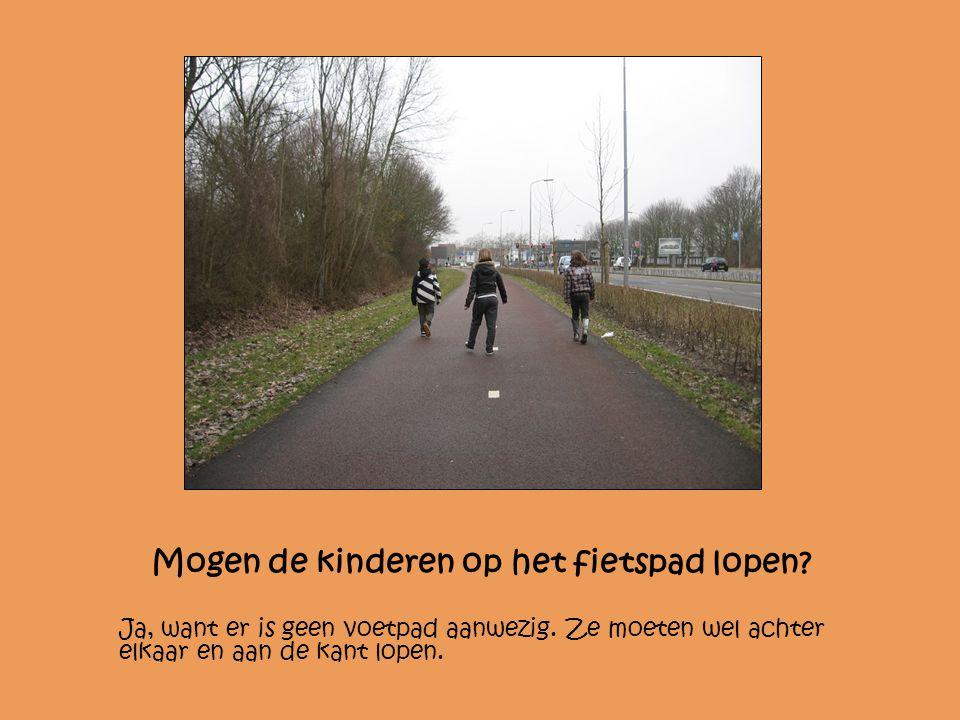 Mogen de kinderen op het fietspad lopen? Ja, want er is geen voetpad aanwezig. Ze moeten wel achter elkaar en aan de kant lopen.