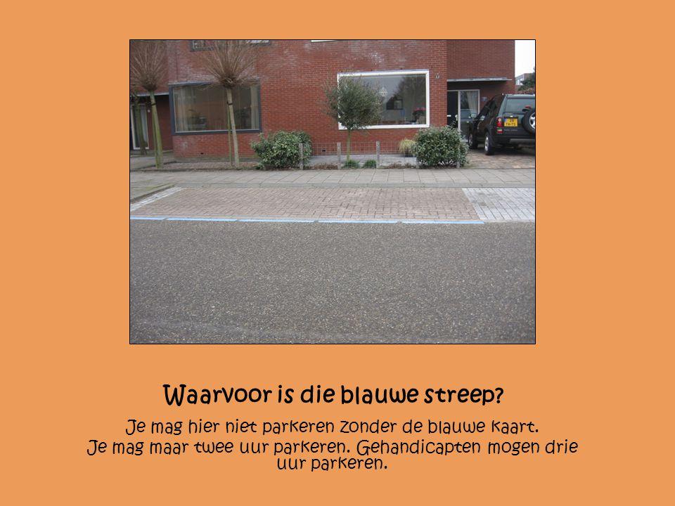 Waarvoor is die blauwe streep? Je mag hier niet parkeren zonder de blauwe kaart. Je mag maar twee uur parkeren. Gehandicapten mogen drie uur parkeren.