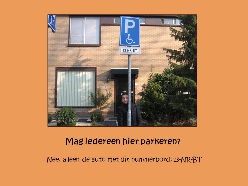 Mag de bus hier staan? Nee, alleen in de parkeervakken.