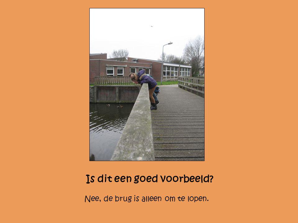 Is dit een goed voorbeeld? Nee, de brug is alleen om te lopen.