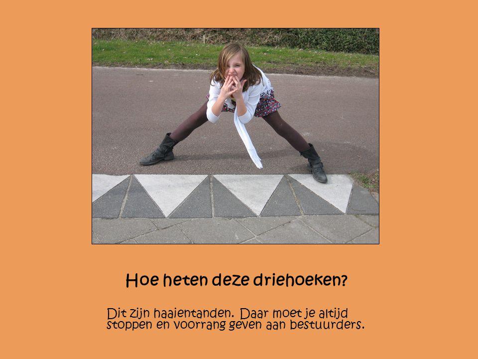 Hoe heten deze driehoeken? Dit zijn haaientanden. Daar moet je altijd stoppen en voorrang geven aan bestuurders.