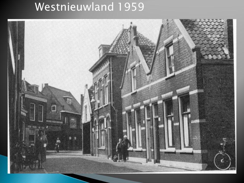 Westnieuwland 1959