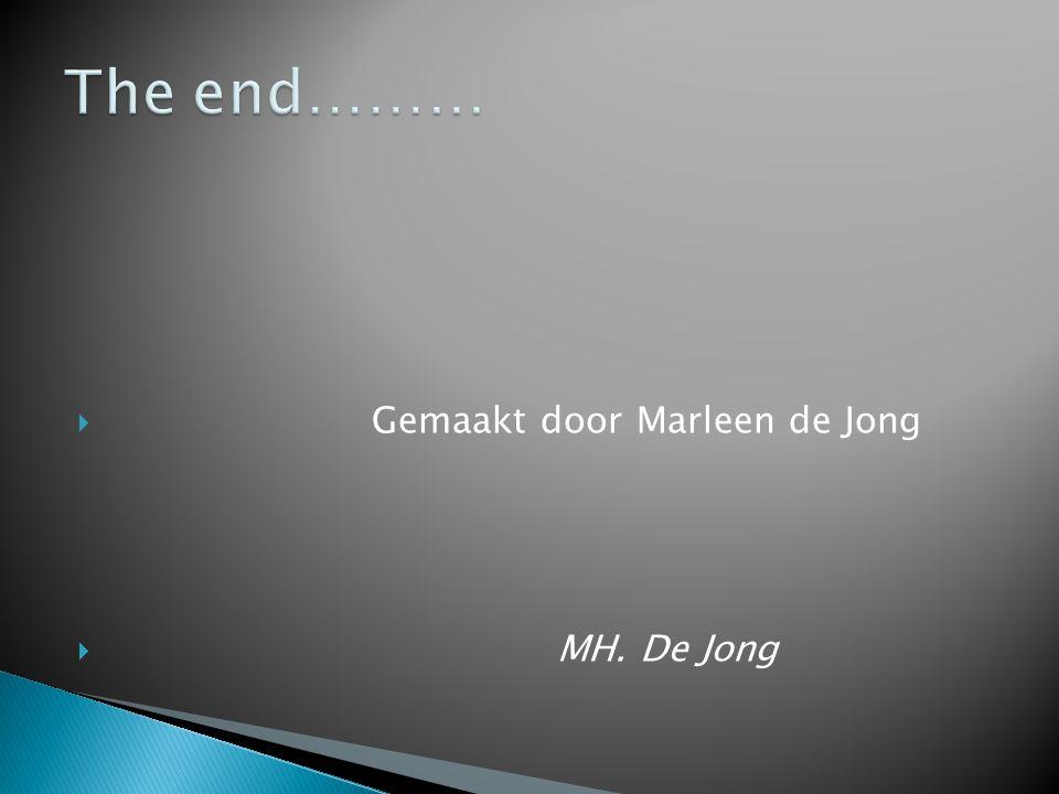  Gemaakt door Marleen de Jong  MH. De Jong