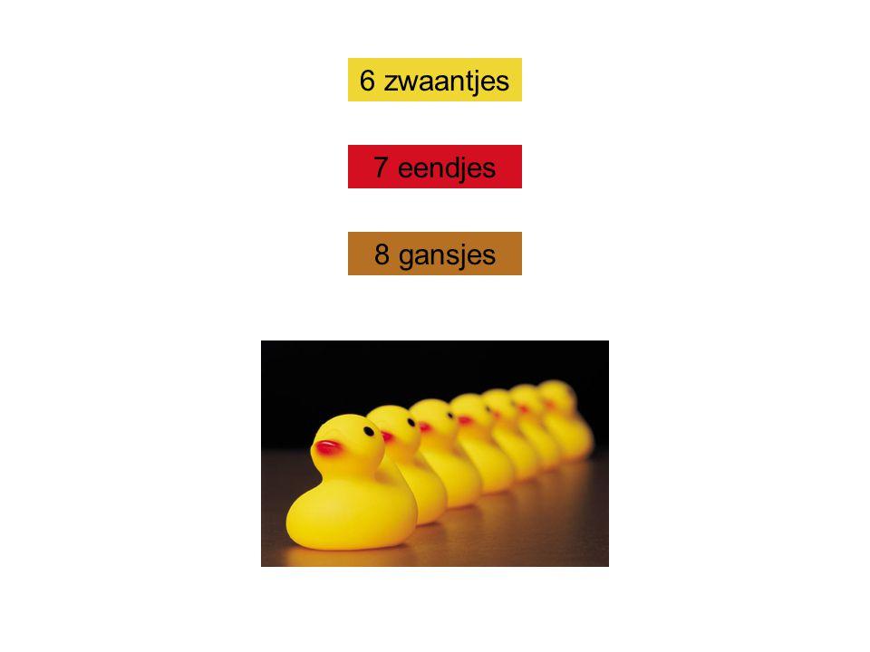 7 eendjes 8 gansjes 6 zwaantjes