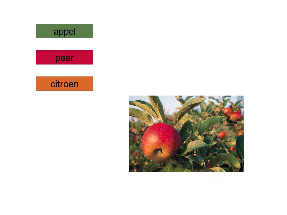 appel citroen peer