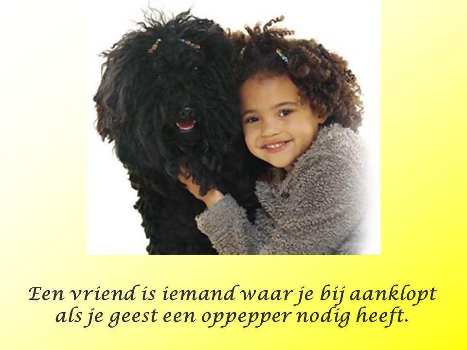 Kinderen en honden. Deze fotograaf heeft goed z'n best gedaan om de kinderen en honden bij elkaar te laten passen. Het is 'm best goed gelukt…… Muziek
