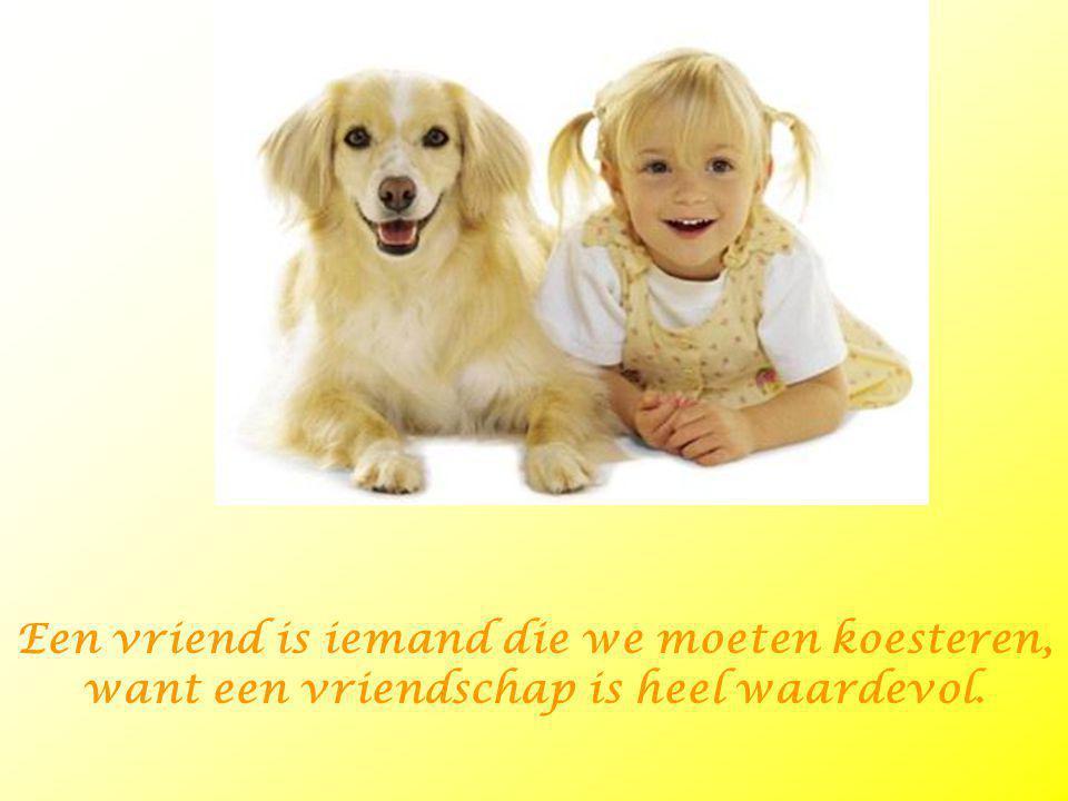 Een vriend is iemand die we moeten koesteren, want een vriendschap is heel waardevol.