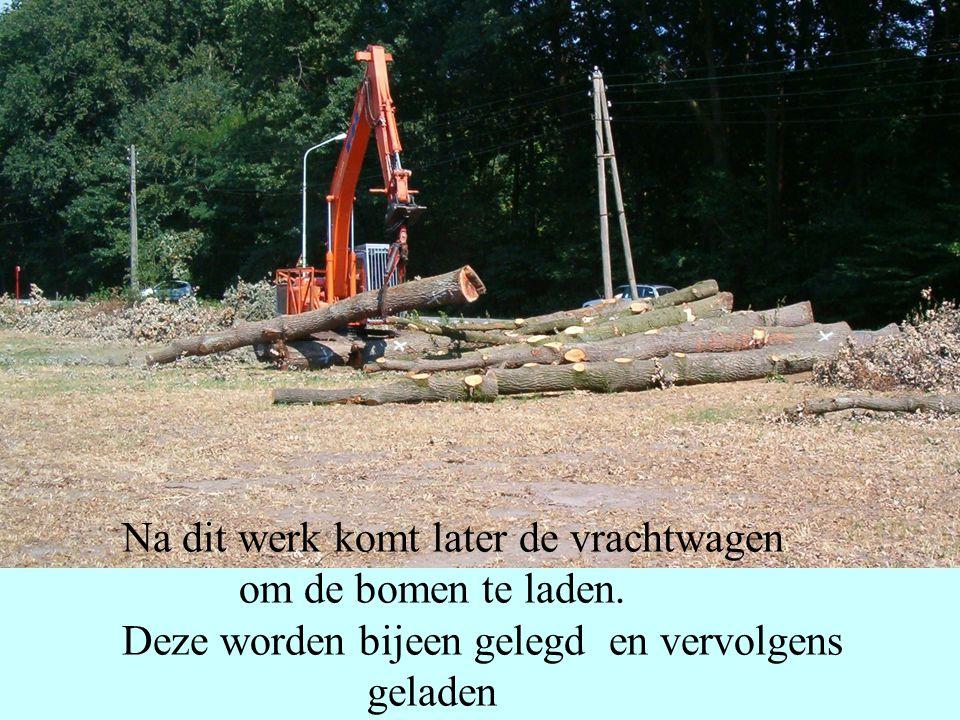 Na dit werk komt later de vrachtwagen om de bomen te laden. Deze worden bijeen gelegd en vervolgens geladen
