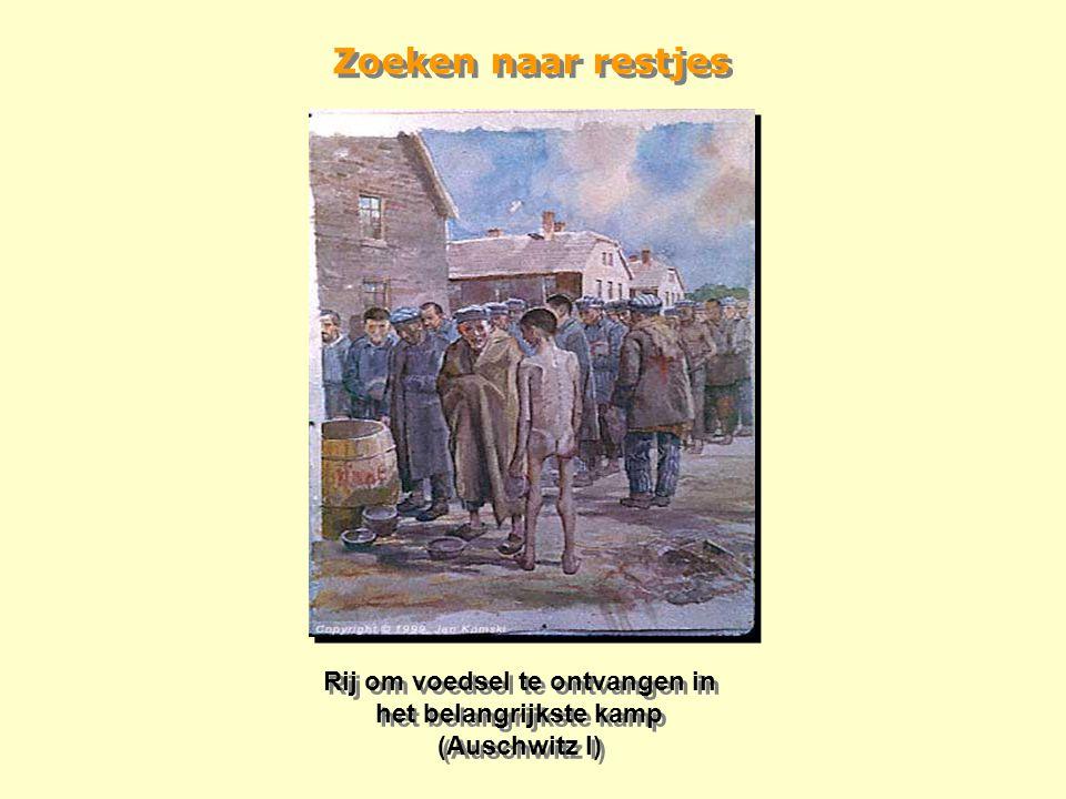 Moord door de SS De Zwarte Muur, op de binnenplaats van Blok 11, waar vele onschuldige mensen neergeschoten werden in de onderkant van de nek. Tussen