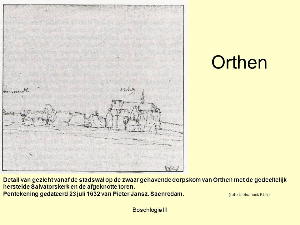 Boschlogie III Orthen Detail van gezicht vanaf de stadswal op de zwaar gehavende dorpskom van Orthen met de gedeeltelijk herstelde Salvatorskerk en de
