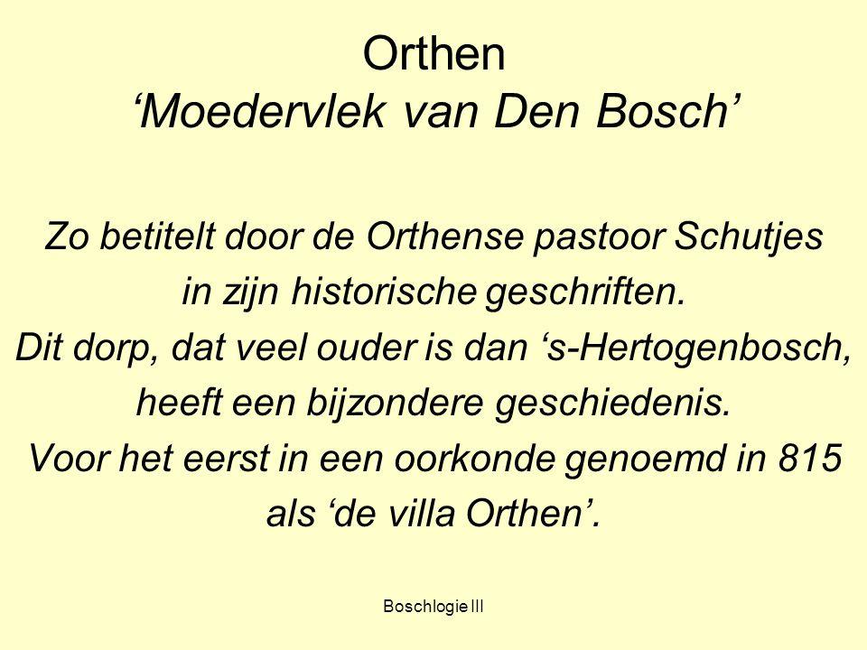 Boschlogie III Orthen 'Moedervlek van Den Bosch' Zo betitelt door de Orthense pastoor Schutjes in zijn historische geschriften. Dit dorp, dat veel oud