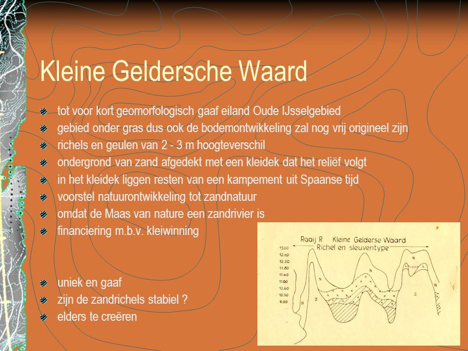 Kleine Geldersche Waard tot voor kort geomorfologisch gaaf eiland Oude IJsselgebied gebied onder gras dus ook de bodemontwikkeling zal nog vrij origin
