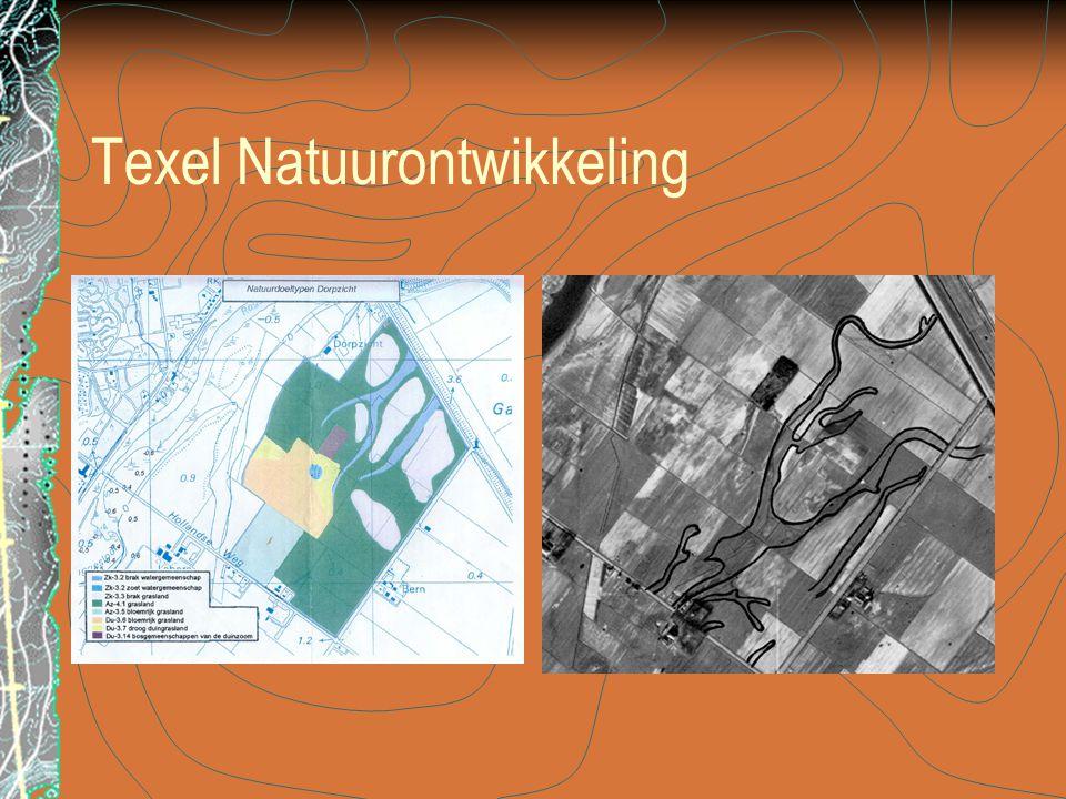 Texel Natuurontwikkeling