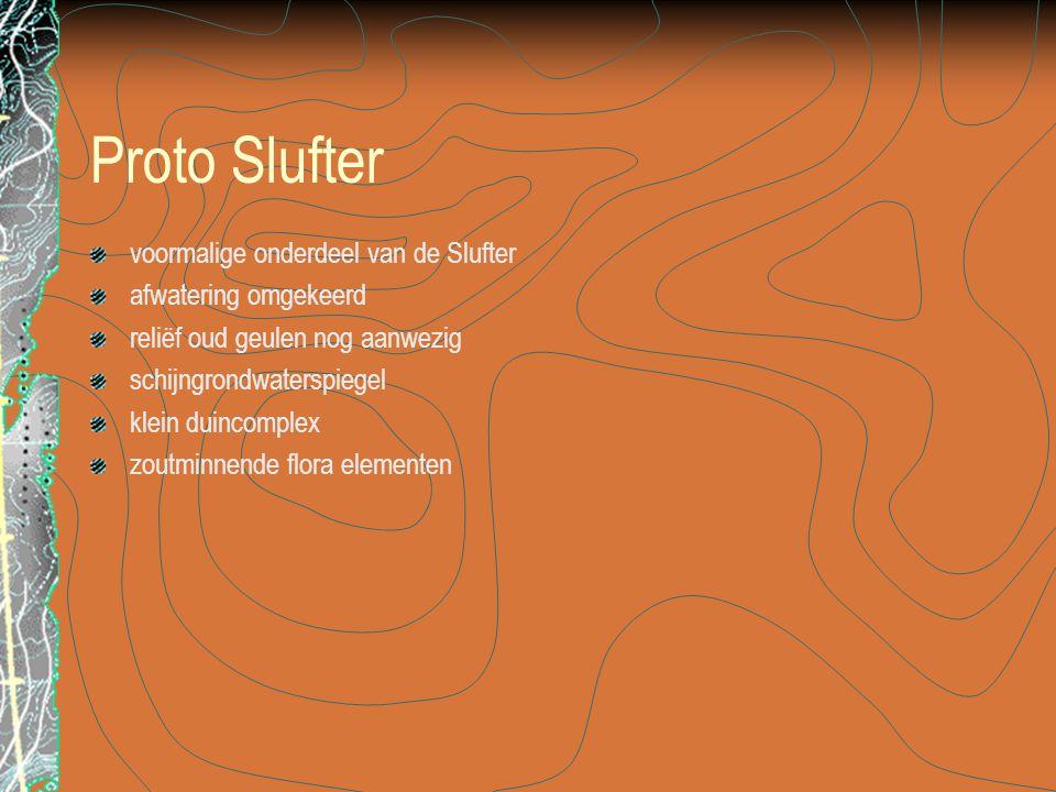 Proto Slufter voormalige onderdeel van de Slufter afwatering omgekeerd reliëf oud geulen nog aanwezig schijngrondwaterspiegel klein duincomplex zoutmi