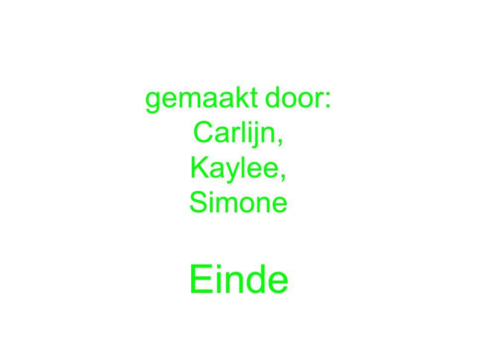 gemaakt door: Carlijn, Kaylee, Simone Einde
