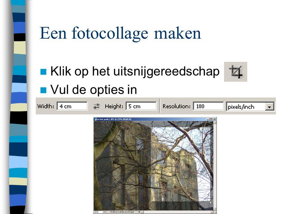 Een fotocollage maken  Klik op het uitsnijgereedschap  Vul de opties in