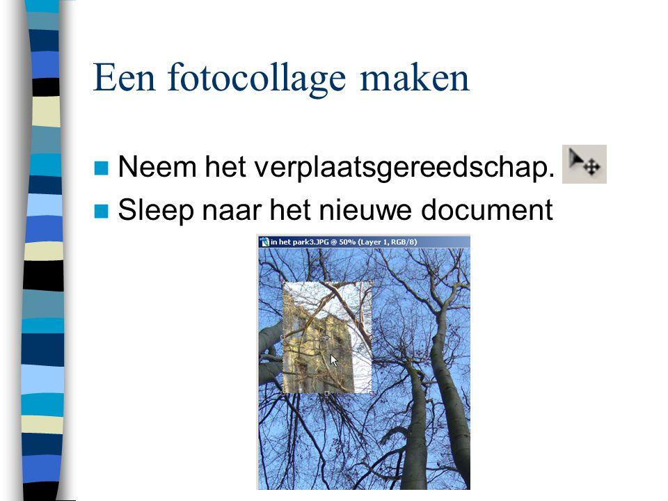 Een fotocollage maken  Neem het verplaatsgereedschap.  Sleep naar het nieuwe document