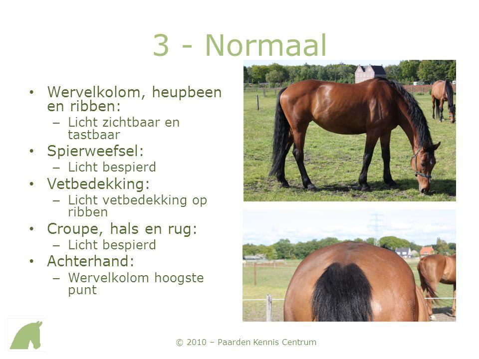 © 2010 – Paarden Kennis Centrum 3 - Normaal • Wervelkolom, heupbeen en ribben: – Licht zichtbaar en tastbaar • Spierweefsel: – Licht bespierd • Vetbed