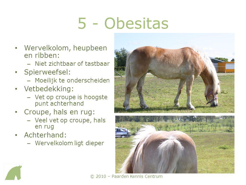 © 2010 – Paarden Kennis Centrum 5 - Obesitas • Wervelkolom, heupbeen en ribben: – Niet zichtbaar of tastbaar • Spierweefsel: – Moeilijk te onderscheid