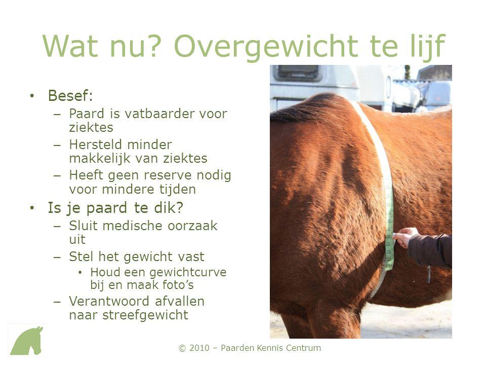 © 2010 – Paarden Kennis Centrum Wat nu? Overgewicht te lijf • Besef: – Paard is vatbaarder voor ziektes – Hersteld minder makkelijk van ziektes – Heef