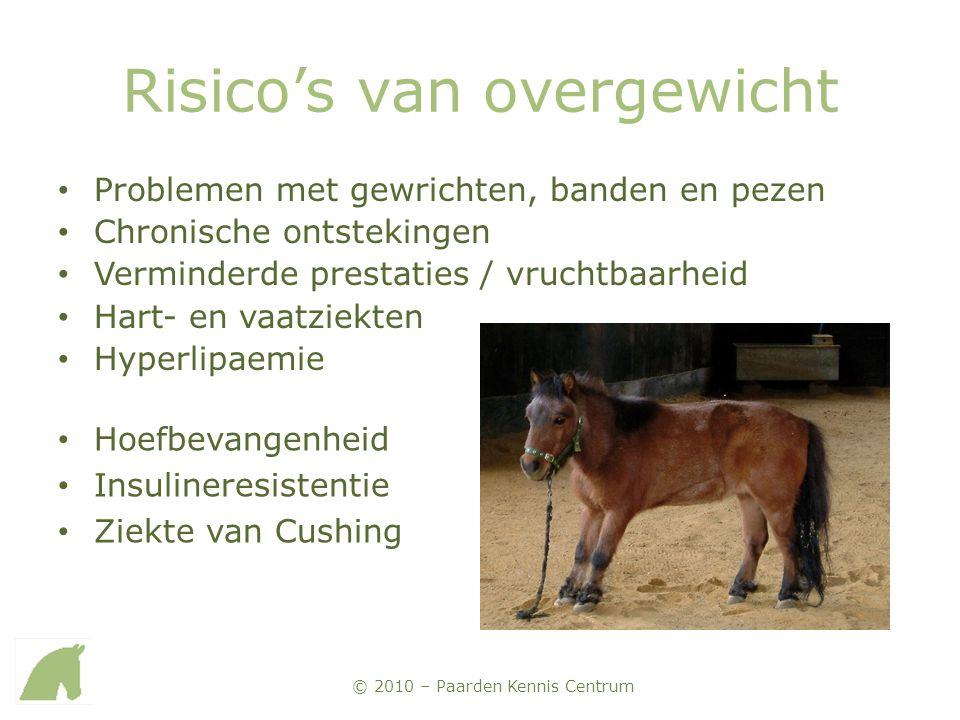© 2010 – Paarden Kennis Centrum Risico's van overgewicht • Problemen met gewrichten, banden en pezen • Chronische ontstekingen • Verminderde prestatie
