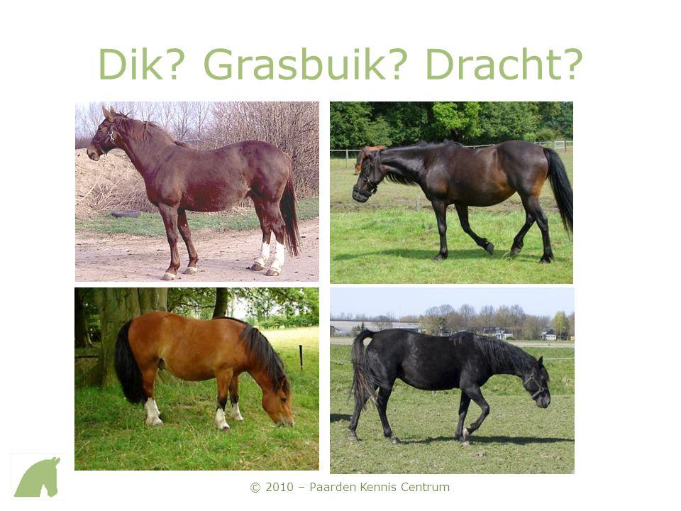 © 2010 – Paarden Kennis Centrum Dik? Grasbuik? Dracht?