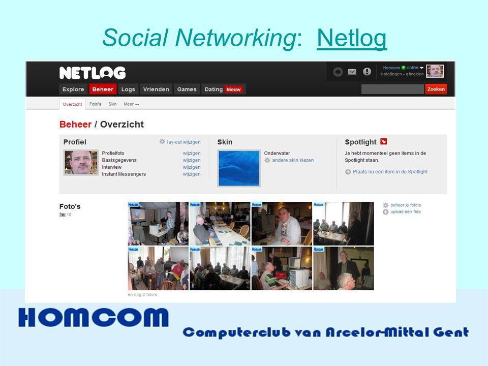 Social Networking: NetlogNetlog