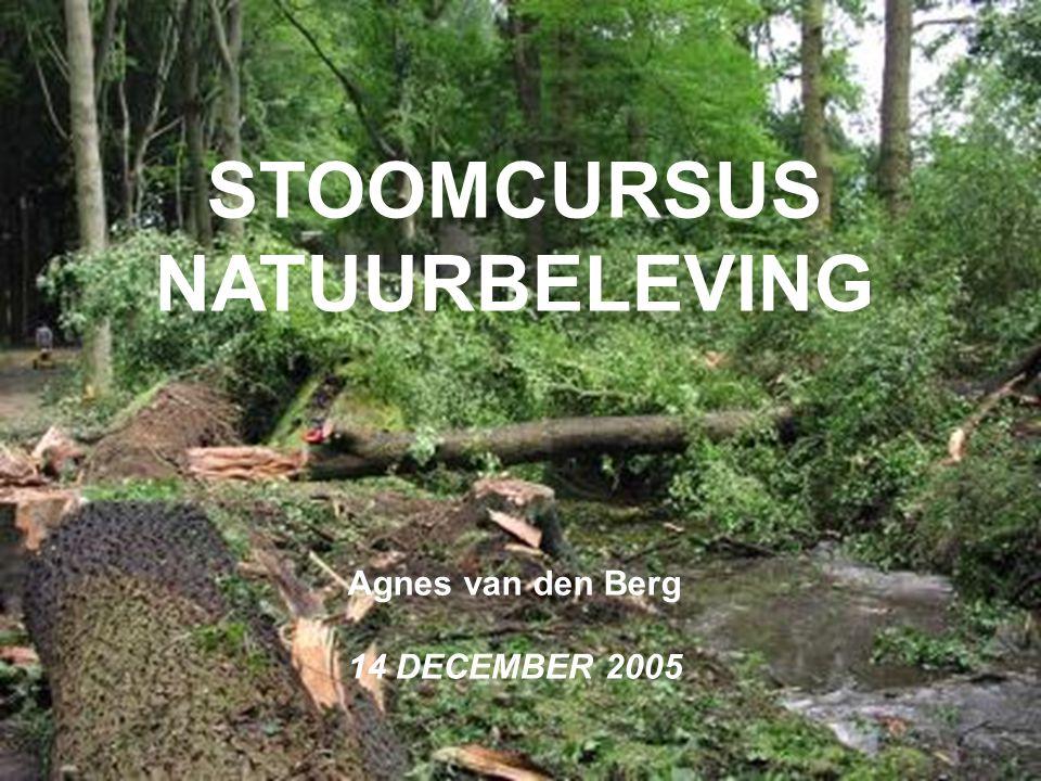 STOOMCURSUS NATUURBELEVING Agnes van den Berg 14 DECEMBER 2005