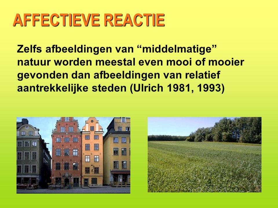 Zelfs afbeeldingen van middelmatige natuur worden meestal even mooi of mooier gevonden dan afbeeldingen van relatief aantrekkelijke steden (Ulrich 1981, 1993) AFFECTIEVE REACTIE
