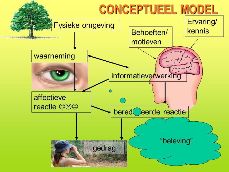 CONCEPTUEEL MODEL waarneming affectieve reactie  informatieverwerking beredeneerde reactie Fysieke omgeving gedrag beleving Ervaring/ kennis Behoeften/ motieven