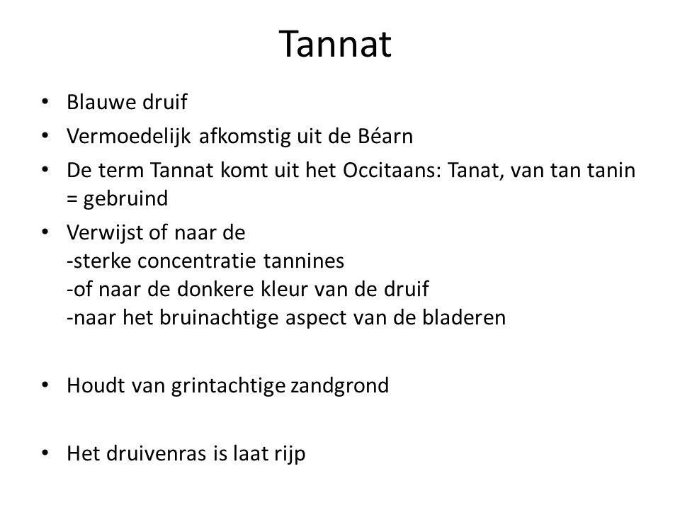 Tannat • Blauwe druif • Vermoedelijk afkomstig uit de Béarn • De term Tannat komt uit het Occitaans: Tanat, van tan tanin = gebruind • Verwijst of naa