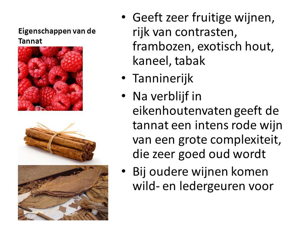 Eigenschappen van de Tannat • Geeft zeer fruitige wijnen, rijk van contrasten, frambozen, exotisch hout, kaneel, tabak • Tanninerijk • Na verblijf in