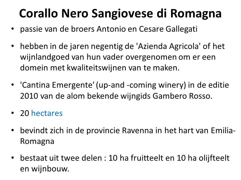 Corallo Nero Sangiovese di Romagna • passie van de broers Antonio en Cesare Gallegati • hebben in de jaren negentig de 'Azienda Agricola' of het wijnl