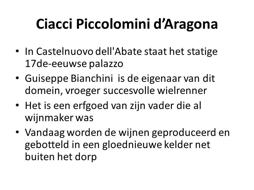 Ciacci Piccolomini d'Aragona • In Castelnuovo dell'Abate staat het statige 17de-eeuwse palazzo • Guiseppe Bianchini is de eigenaar van dit domein, vro