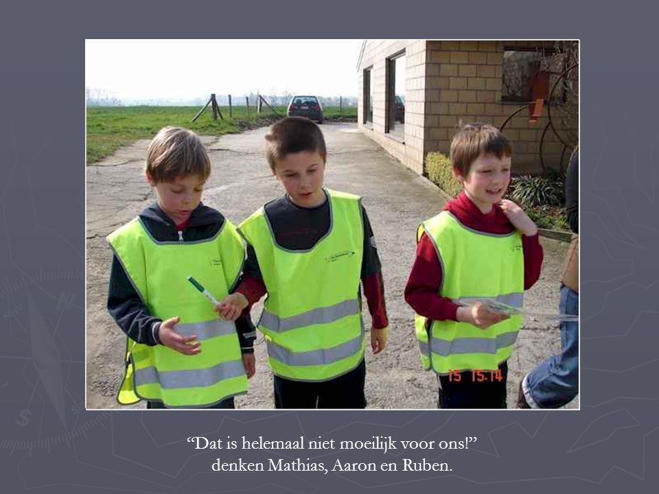 """""""Dat is helemaal niet moeilijk voor ons!"""" denken Mathias, Aaron en Ruben."""