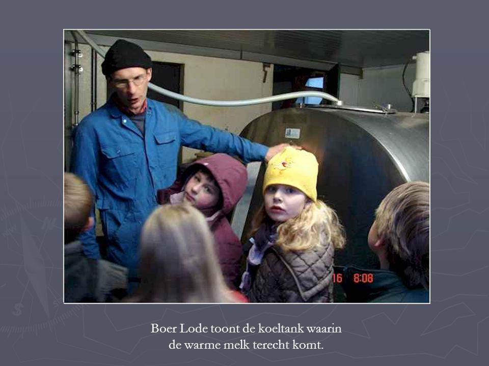 Boer Lode toont de koeltank waarin de warme melk terecht komt.