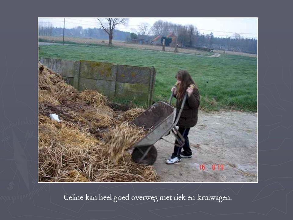 Celine kan heel goed overweg met riek en kruiwagen.
