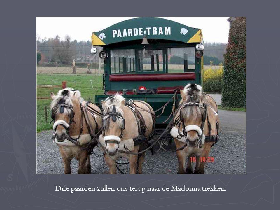 Drie paarden zullen ons terug naar de Madonna trekken.