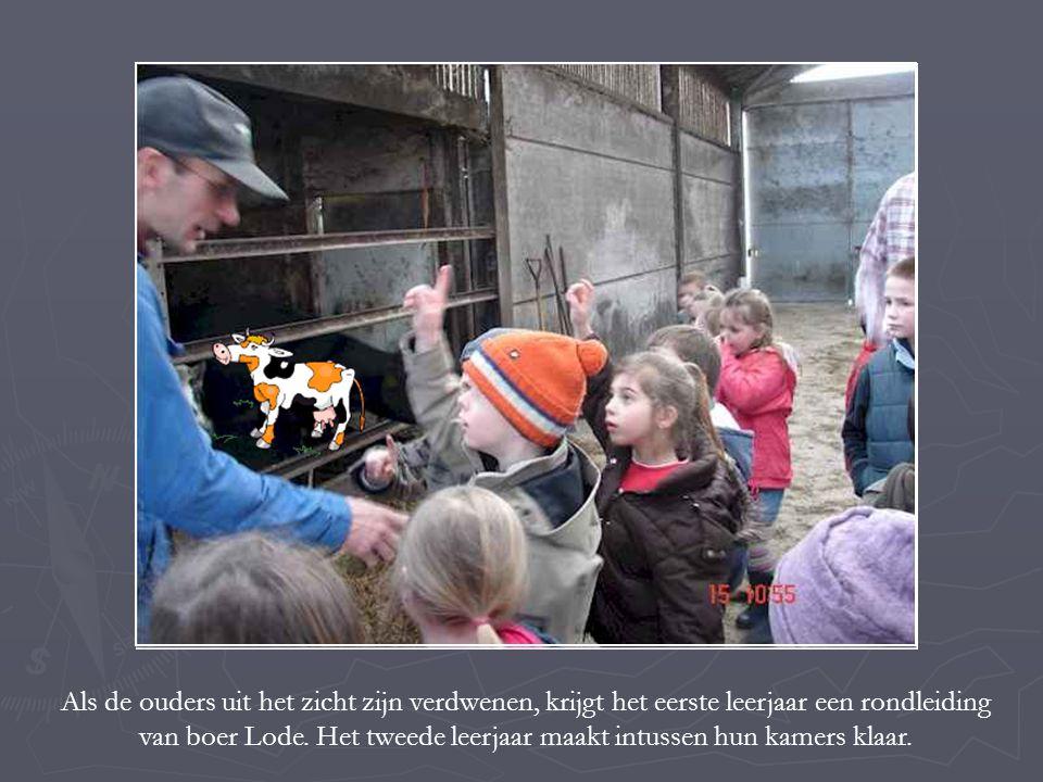 Als de ouders uit het zicht zijn verdwenen, krijgt het eerste leerjaar een rondleiding van boer Lode.