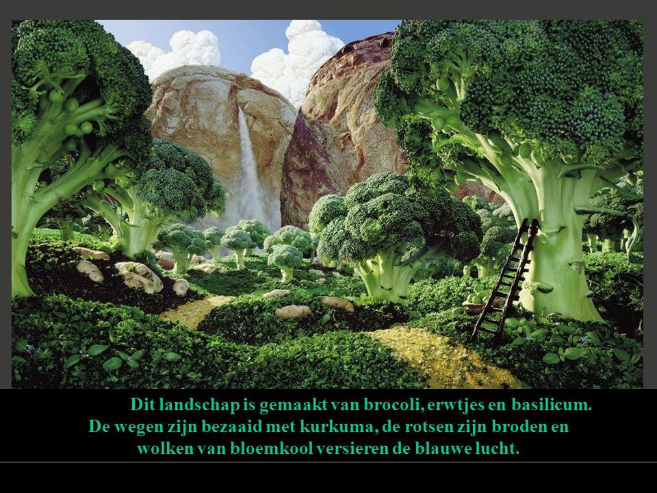 Dit landschap is gemaakt van brocoli, erwtjes en basilicum.