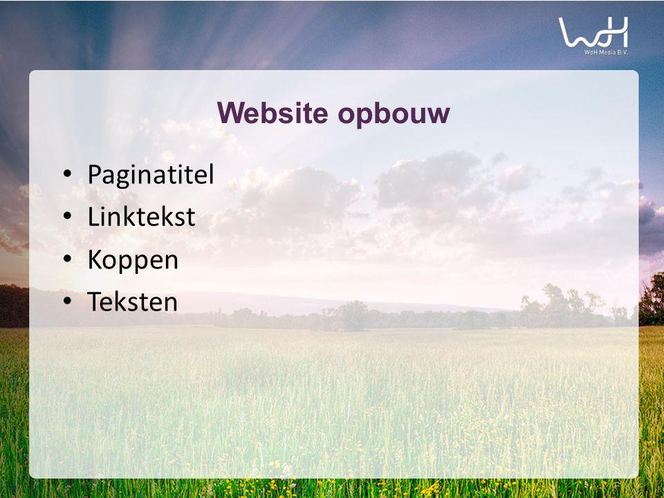 Website opbouw • Paginatitel • Linktekst • Koppen • Teksten