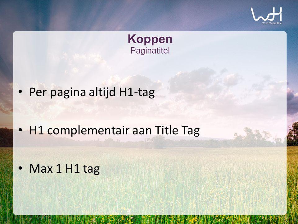Koppen Paginatitel • Per pagina altijd H1-tag • H1 complementair aan Title Tag • Max 1 H1 tag