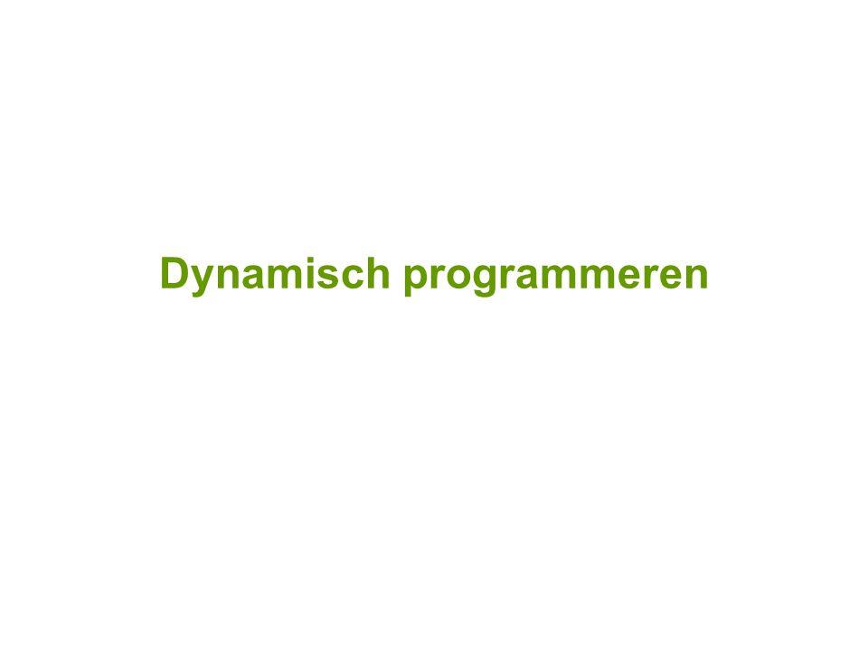 Dynamisch programmeren